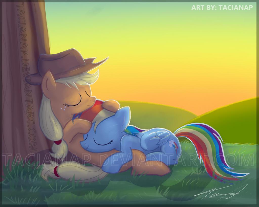 Applejack And Rainbow Dash by Fecu on DeviantArt  Applejack