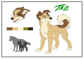 Taz Reference Sheet 2019 by Fecu