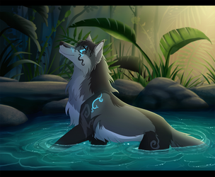 Relaxation by Fecu