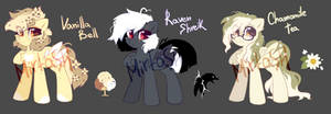 #2 MLP adoptable pack closed