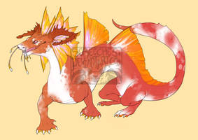 Koi Dragoncat DESIGN AUCTION (CLOSED) by Screeches