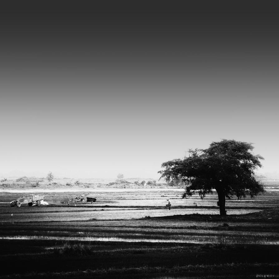 Country Life by Rawangtak
