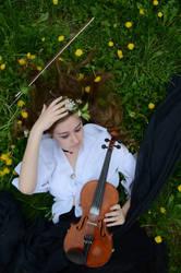 violin stock.