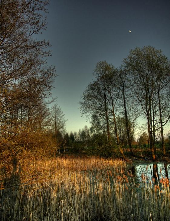 River 11 by mateuszskibicki1