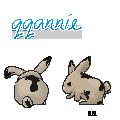 qqannie bunny avatar by hikaru123qq