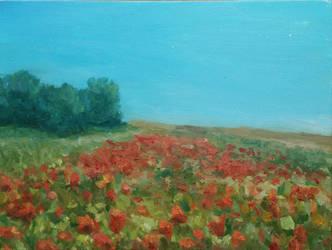 Poppy field by aleksandrauzarek
