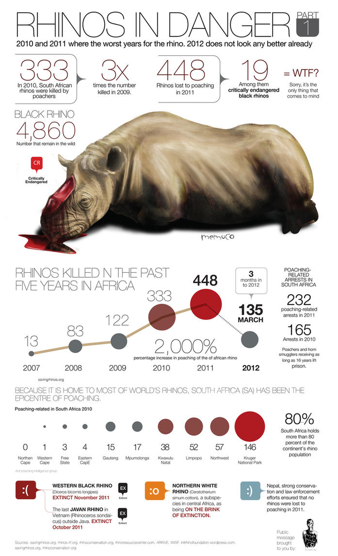 RHINO POACHING by memuco