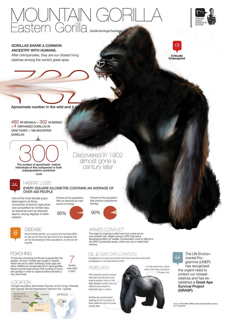 Mountain Gorilla angry version by memuco on DeviantArt