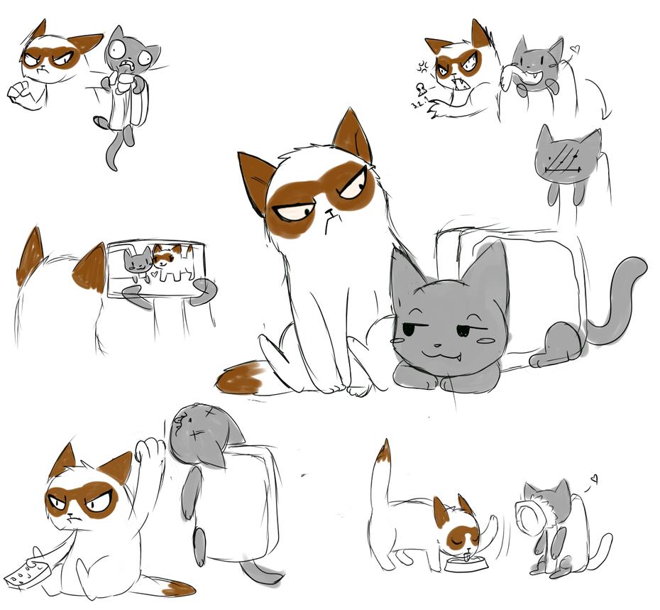 Grumpy cat and Nyan cat?? by Nigko