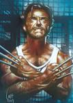 Wolverine - Sketch Card