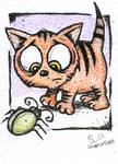 ACEO Kitten and Beetle by stuartmcghee