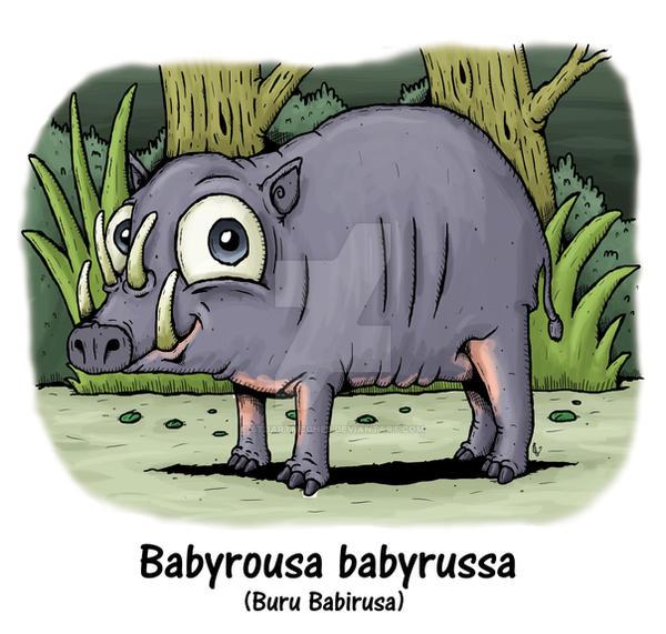 Buru Babirusa by stuartmcghee