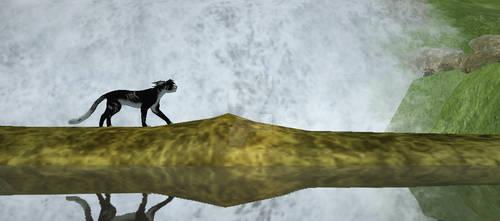A Waterfall Stroll