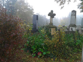 Cemetery Stock III. by ChristinaIsabella