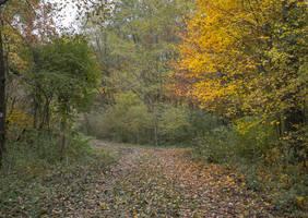 Autumn Stock II. by ChristinaIsabella