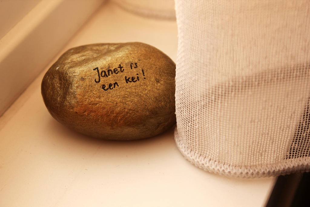 I am a rock by Janerd