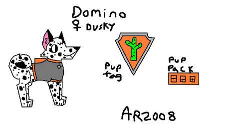 Domino the desert rescue pup