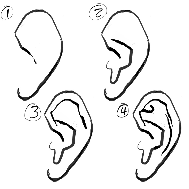 How to draw the ear by paperbag ninja
