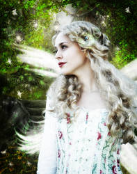 The Enchanted Vision of a Fae by Ferelwing
