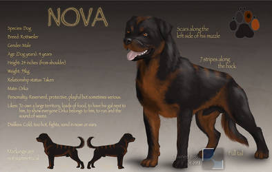 Nova reference sheet