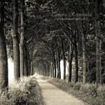 Wanderer's Secrets by TammyPhotography