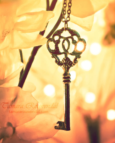 Unlock the beauty by TammyPhotography