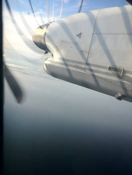 Plane Shadows out the Window