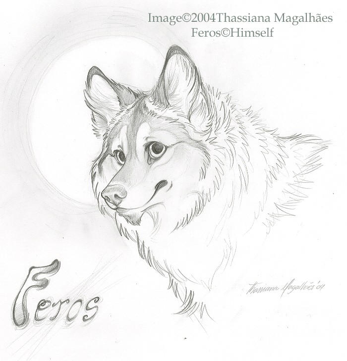 Feros Furry by thassy