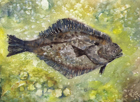 Seasoned halibut