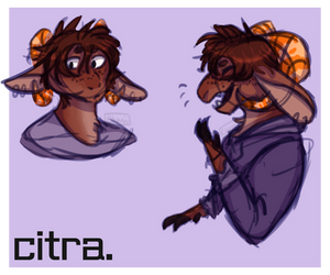 Citra by Chilliechee