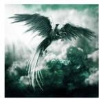 Griffin in Jade Skies by GingerKellyStudio