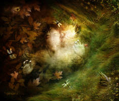 To Drown: A Dream by GingerKellyStudio