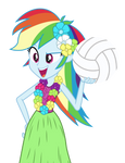 Hula Rainbow Dash