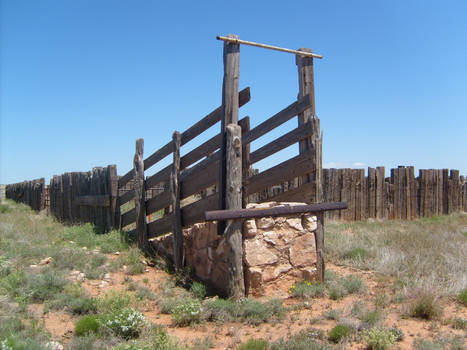 corral in new mexico