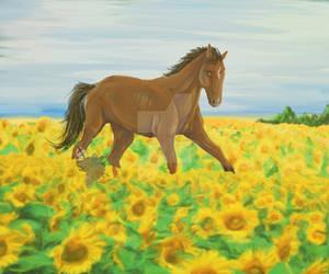 Horse in a Sunflower field