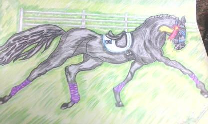 Champion Horse by RufusShinrareno