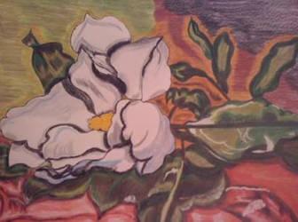 Magnolia by RufusShinrareno