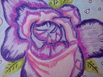 violet roses by RufusShinrareno