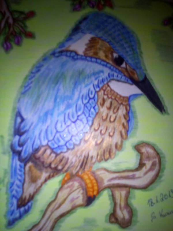 eisvogel by RufusShinrareno
