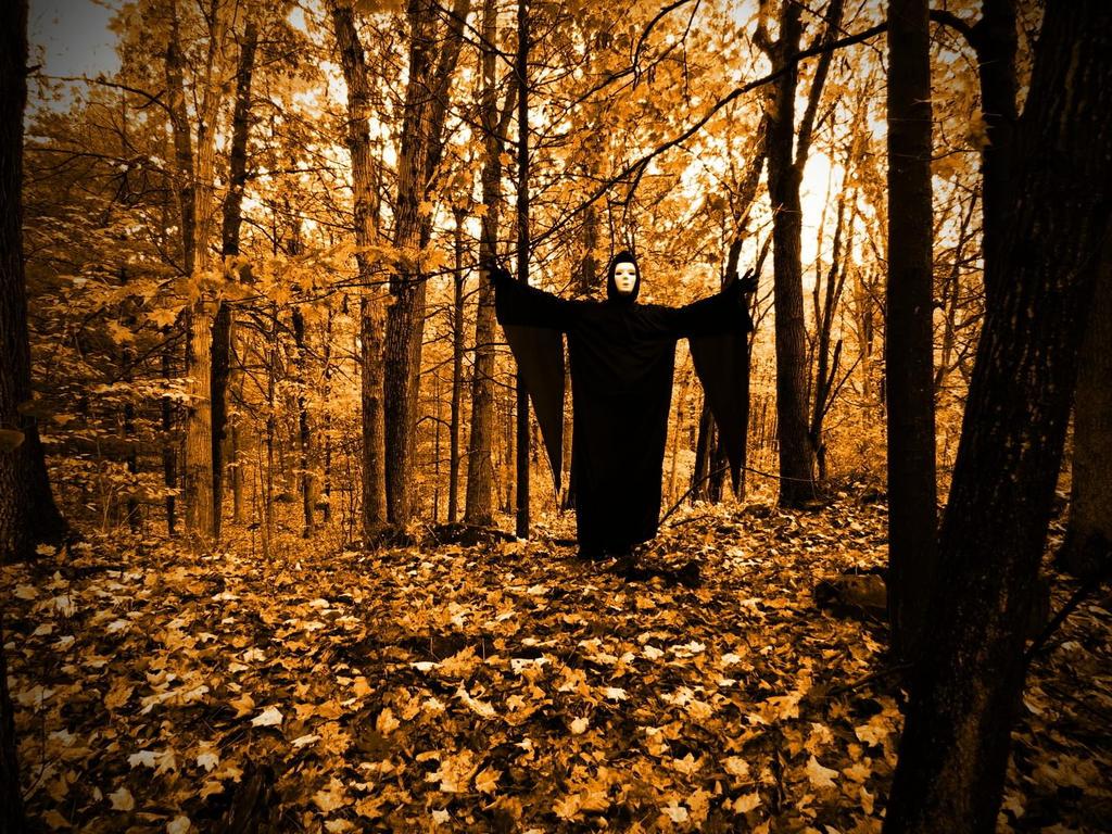 Forest Stalker by artmusiccw