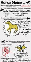 Horse Meme by horseartaddict