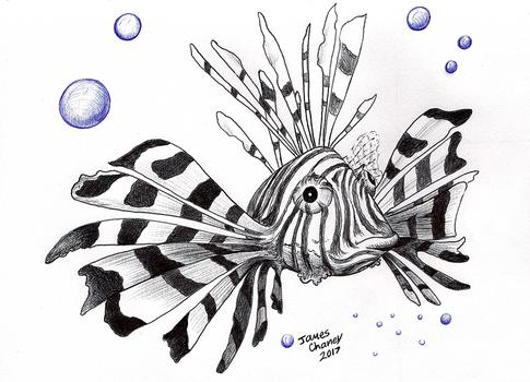 Lion Fish 2017