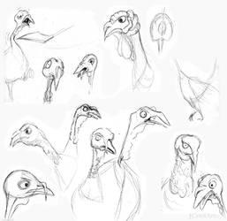 Turkey Sketches