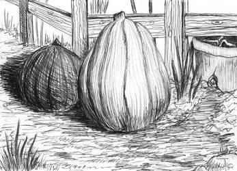 Autumn 2020 sketch