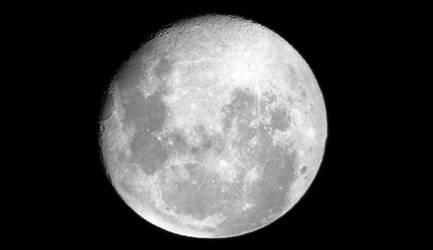 Moonshot 12-31 2020