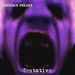 Tentative Seven Inch cover