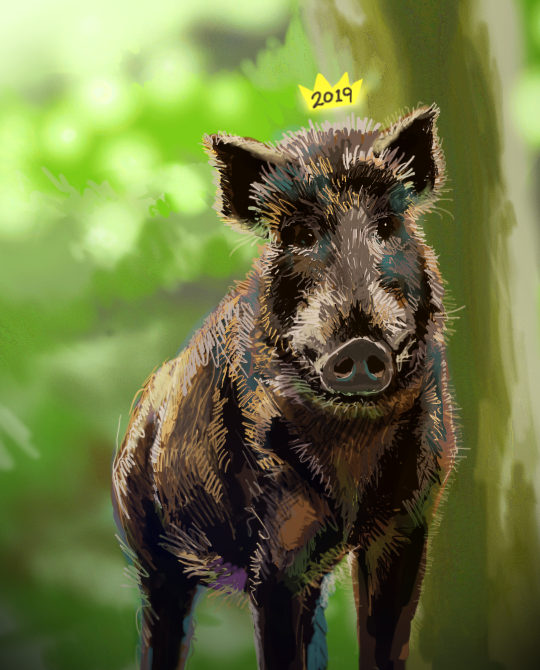 Year of the Pig by stuffed