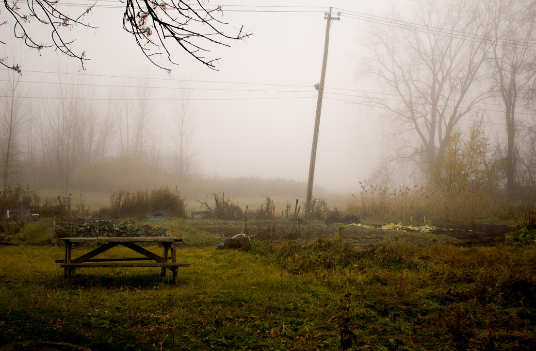Vanishing in loneliness by GDN-Designs