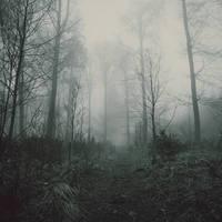 Mist by blumilein