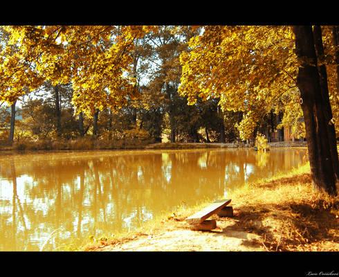 By the pond I
